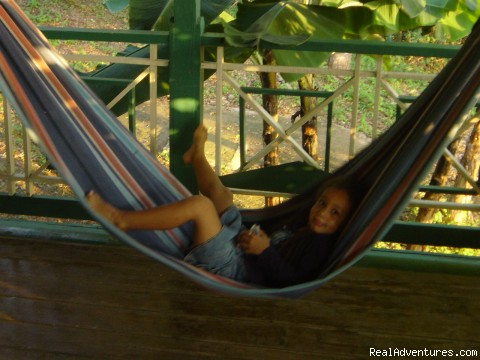 Relax on the hammocks - Quiet and relaxing getaway at Harding Hall House