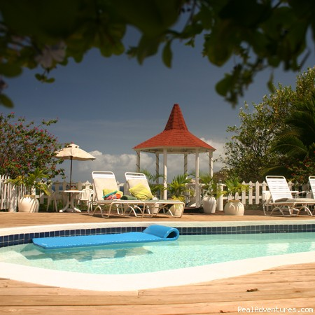 Villa Capri for retreats, wedding, birthday, group: Pool with Gazebo