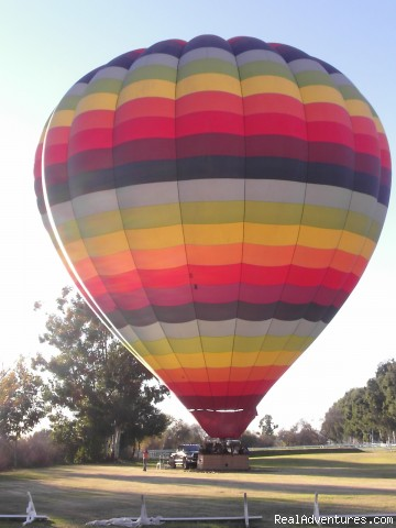 Affordable quality hot air balloon rides Celebration Balloon