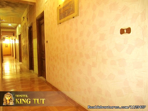 ( king tut hostel ) Hostel in Cairo Egypt hostels
