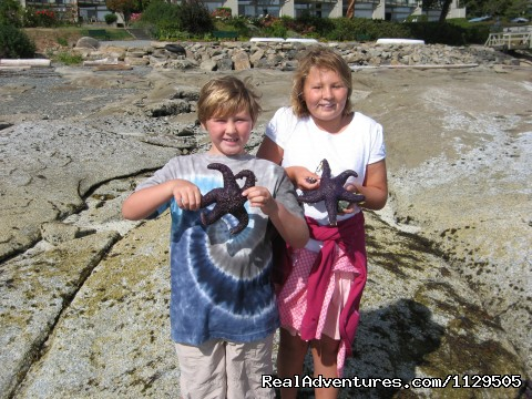 Fun exploring the tidal pools in front of your suite - Pacific Ocean Condo Getaways- Views, Pool, Jacuzzi