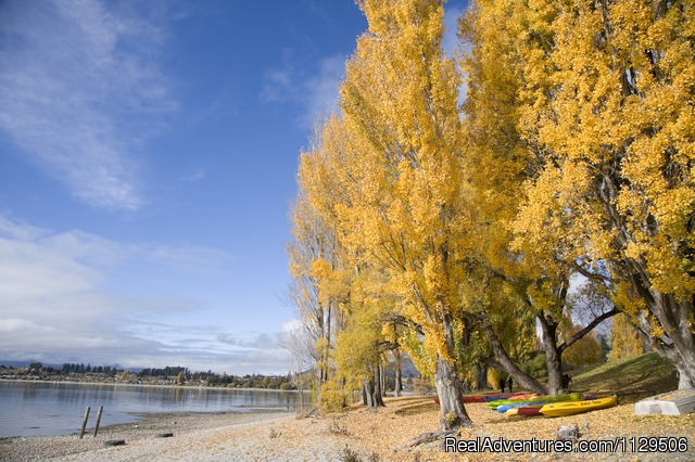 Autumn by Lake Wanaka - Edgewater -Lake Wanaka