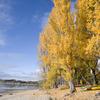 Edgewater -Lake Wanaka
