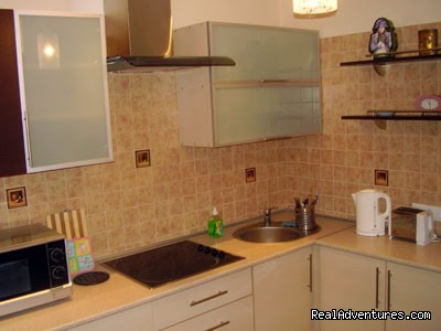 Kitchen - Minsk central 1 room LUXURY Apartment