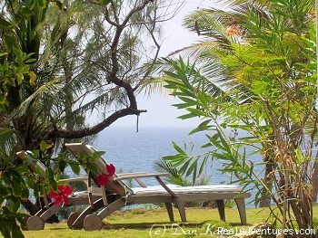 Relax in the garden (#1 of 5) - Sea-U Guest House