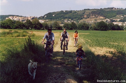 bike tours (#4 of 7) - Unforgettable holidays near Siena
