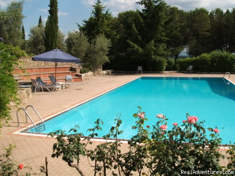 the pool - charming B&B among Brunello vineyards