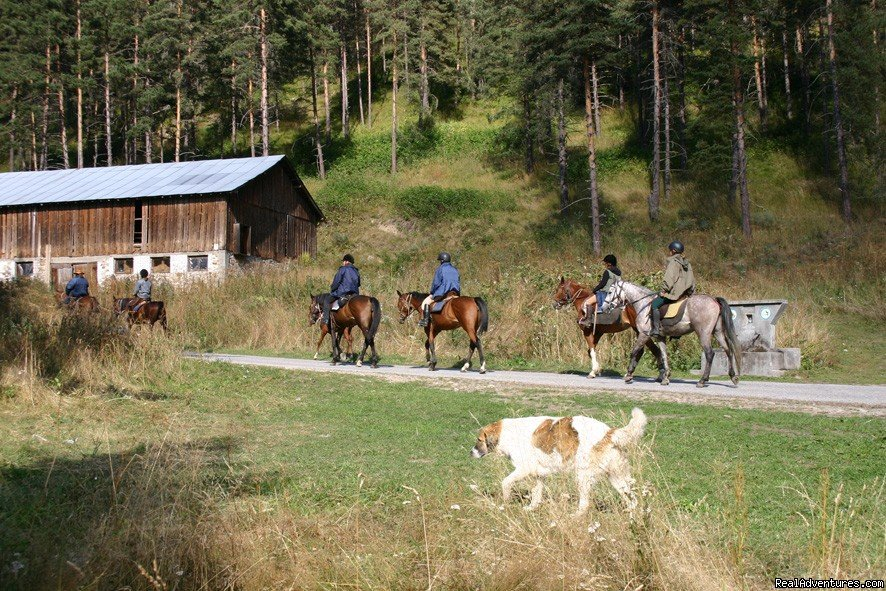 On the trail | Image #8/22 | Equestrian&Adventure vacation in beauty Bulgaria