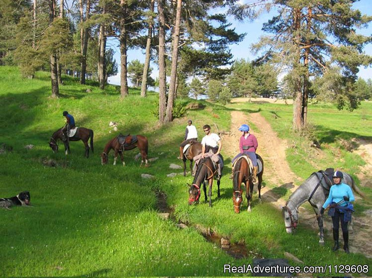 Image #22/22 | Equestrian&Adventure vacation in beauty Bulgaria