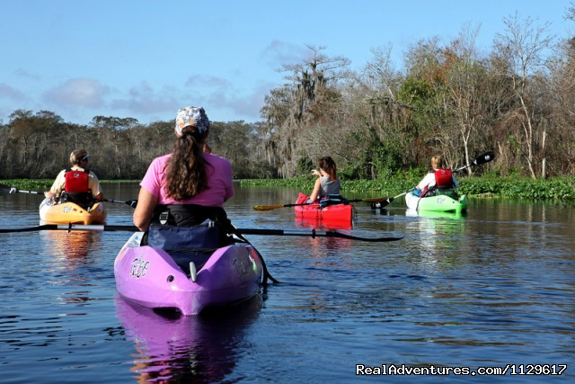Girl's day out (#10 of 25) - Guided kayak tours in Central Florida