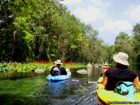 Friends...Gone Paddling - Guided kayak tours in Central Florida