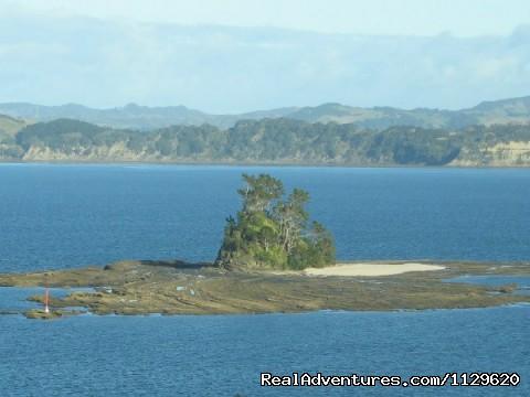 Beehive Island - Island Retreat - Kawau Island Experience