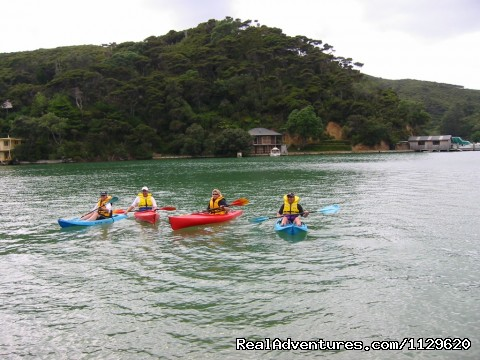 Guests Kayaking (#10 of 18) - Island Retreat - Kawau Island Experience