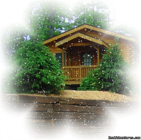 Country Charm (#2 of 23) - Serenity Log Cabins
