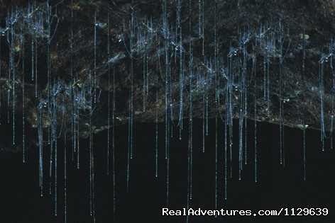 GlowWorms - Underworld Adventures