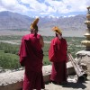 Explore Rich Buddhist Culture of Ladakh Himalaya Sight-Seeing Tours Ladakh, India