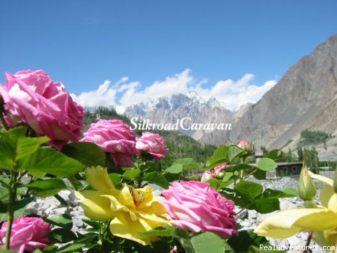 Trekking & Tour in Pakistan with Silk Road Caravan