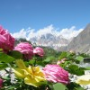 Trekking & Tour in Pakistan with Silk Road Caravan Eco Tours Pakistan