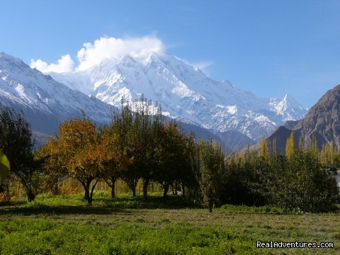 Rakaposhi 7788M view from Hunza - NORTH PAKISTAN ADVENTURE Trekking andTours