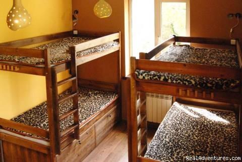 Mundo Hostel African room