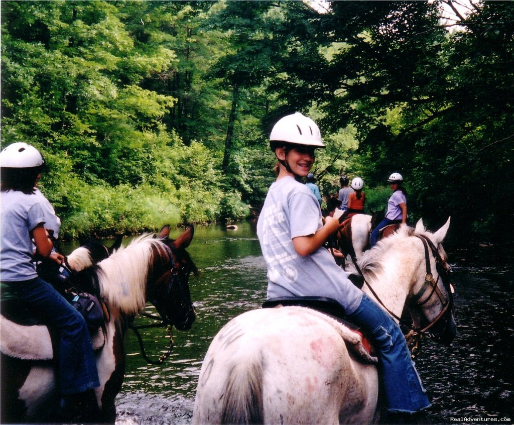 Image #8/15 | Gentle,well-trained Horses-Horseback Adventures