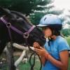 Gentle,well-trained Horses-Horseback Adventures