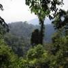 Adventure, Nature and Leisure Sumatera Trip