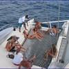 Sailing Trips In Tamarindo