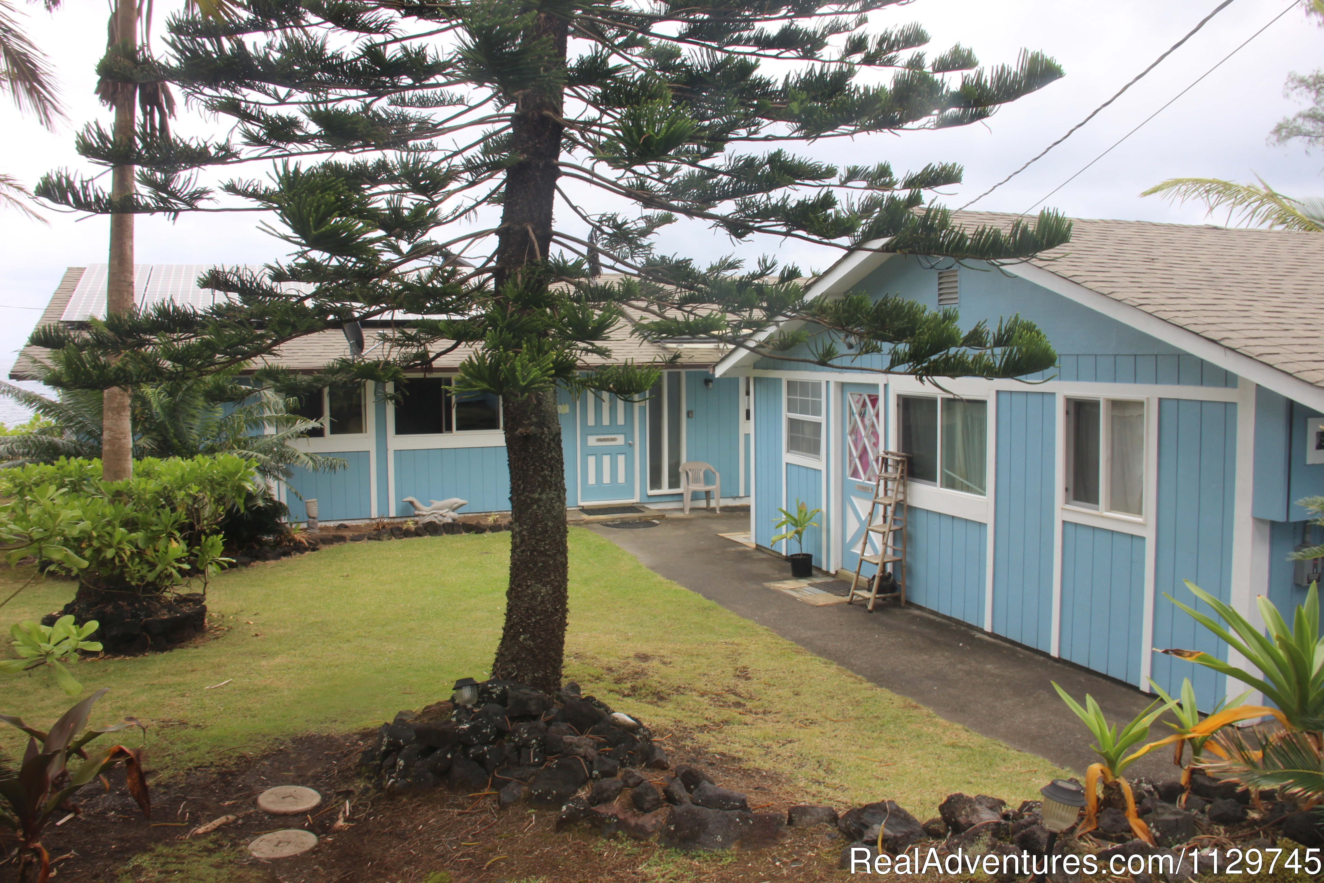 Oceanfront Alohahouse Exterior View