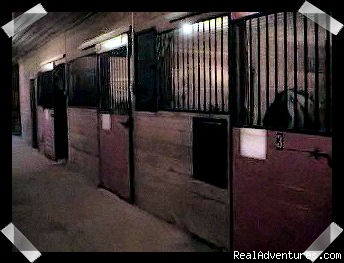 Photo #2 - Overnight Horse Accomodations, Lessons, Trail Ride