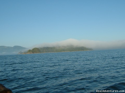 - Fantastic Vancouver Island Fishing Adventures