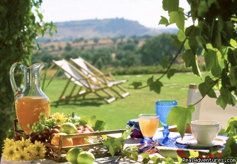 Picnics in the shade, or lunches on the shore... - Blue Coast Bikes Luxury Bike Tours in Portugal
