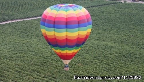 Pride over the vineyards. - Hot Air Balloon Rides above Northern California
