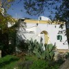 Old farm house B & B in Southern Italy
