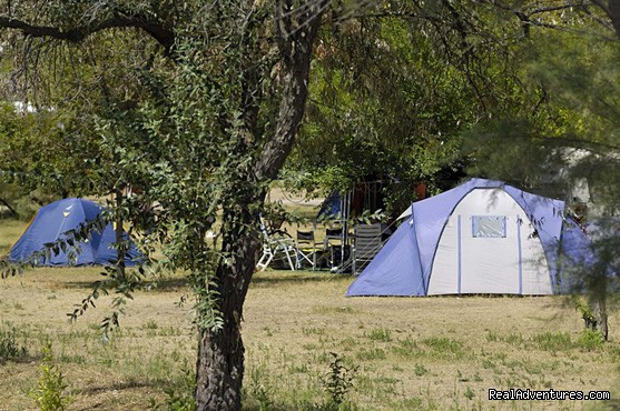 Camping Ca'Savio - pitches