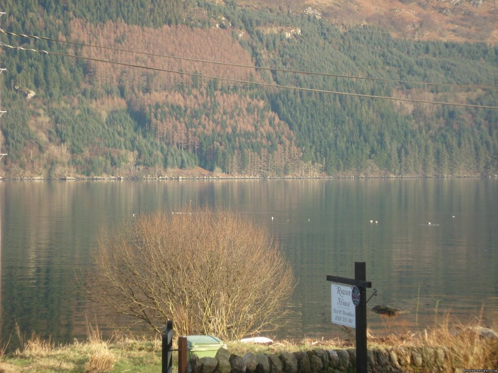 view from rowan house -loch goil
