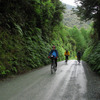Hollyford Ride