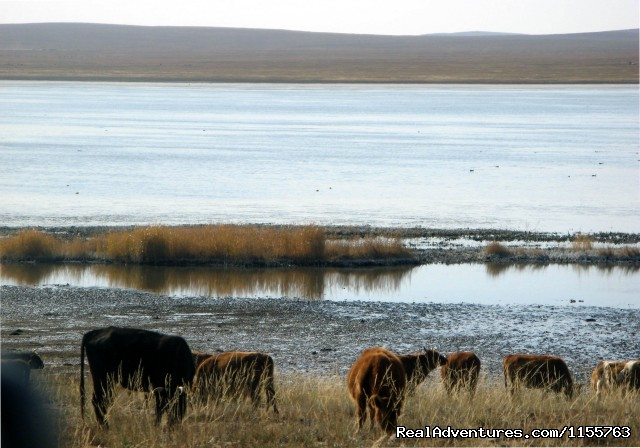 A lake - Discover Gobi desert with Idre's tour in Mongolia.