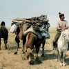 Discover Gobi desert with Idre's tour in Mongolia. Ulaanbaatar, Mongolia Sight-Seeing Tours
