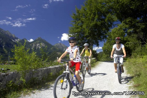 Cycling along the romantic road - Cycling and walking holidays in Europe