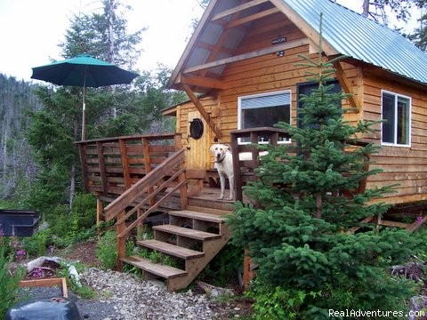 Tidepool Cabin - the reason you'll come to Alaska