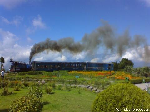War Memorial - Darjeeling. - Tour & Treks in Darjeeling, Sikkim, Nepal, Bhutan