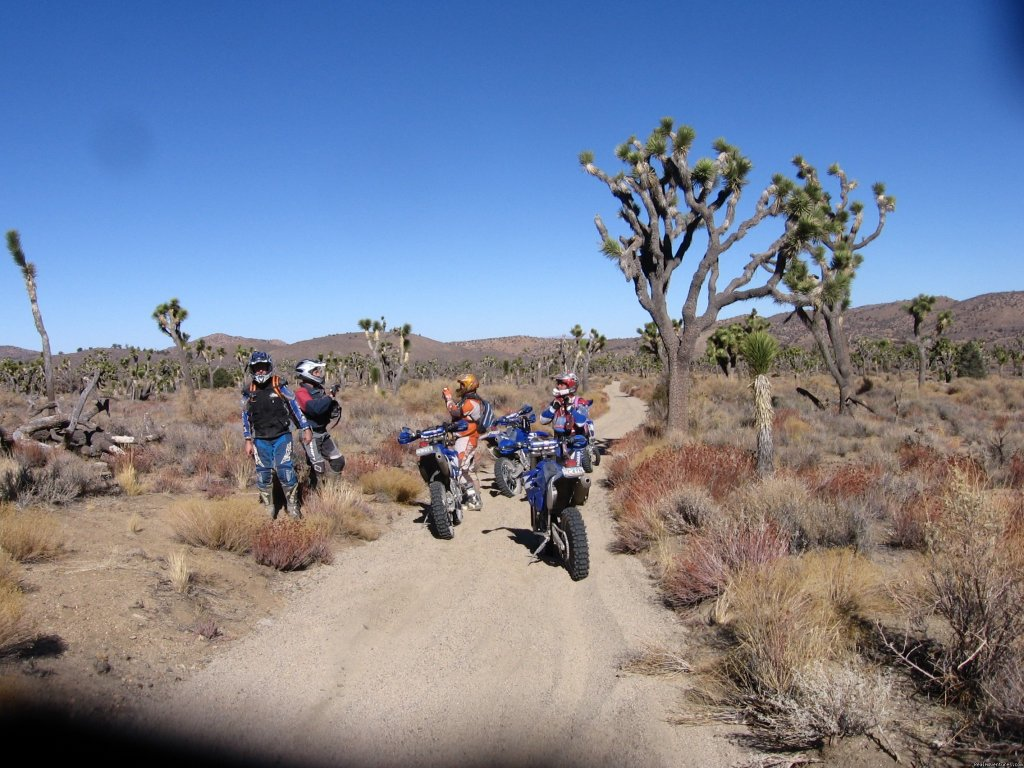 Yucca Valley | Image #16/22 | MotoVentures Dirt Bike Training, Rides and Trials