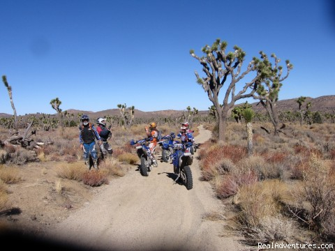 Yucca Valley - MotoVentures Dirt Bike Training, Rides and Trials