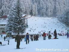 Romania Ski Holiday Packages - Ski Tour Package in Poiana Brasov, Transylvania