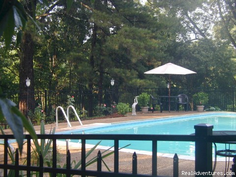 Bryn Rose Inn, Swimming Pool - Secluded B&B on Confederate Battle lines