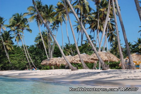 La Playita beach - Chalet Tropical Village