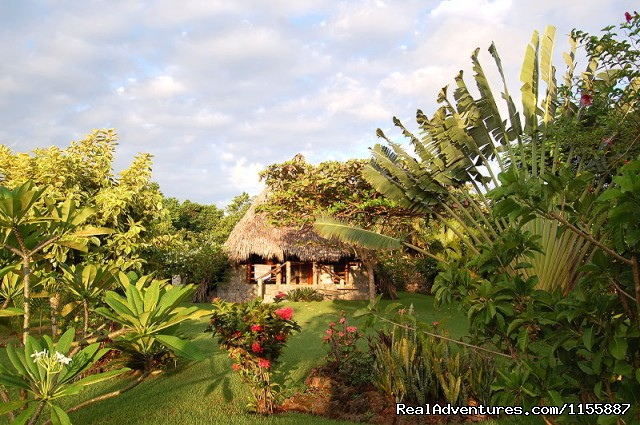 Chalet 1 and its tropical corner - Chalet Tropical Village