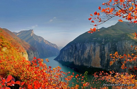 Victoria Cruises, Top 5-Star Yangtze River Cruise This is the beautiful scenery of Qutang Gorge in autumn