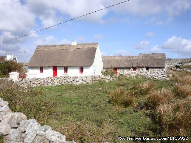 - Connemara Day Tours